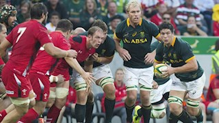 Watch South Africa v Wales live at the Rec on Saturday