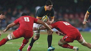 Louw returns to face Japan