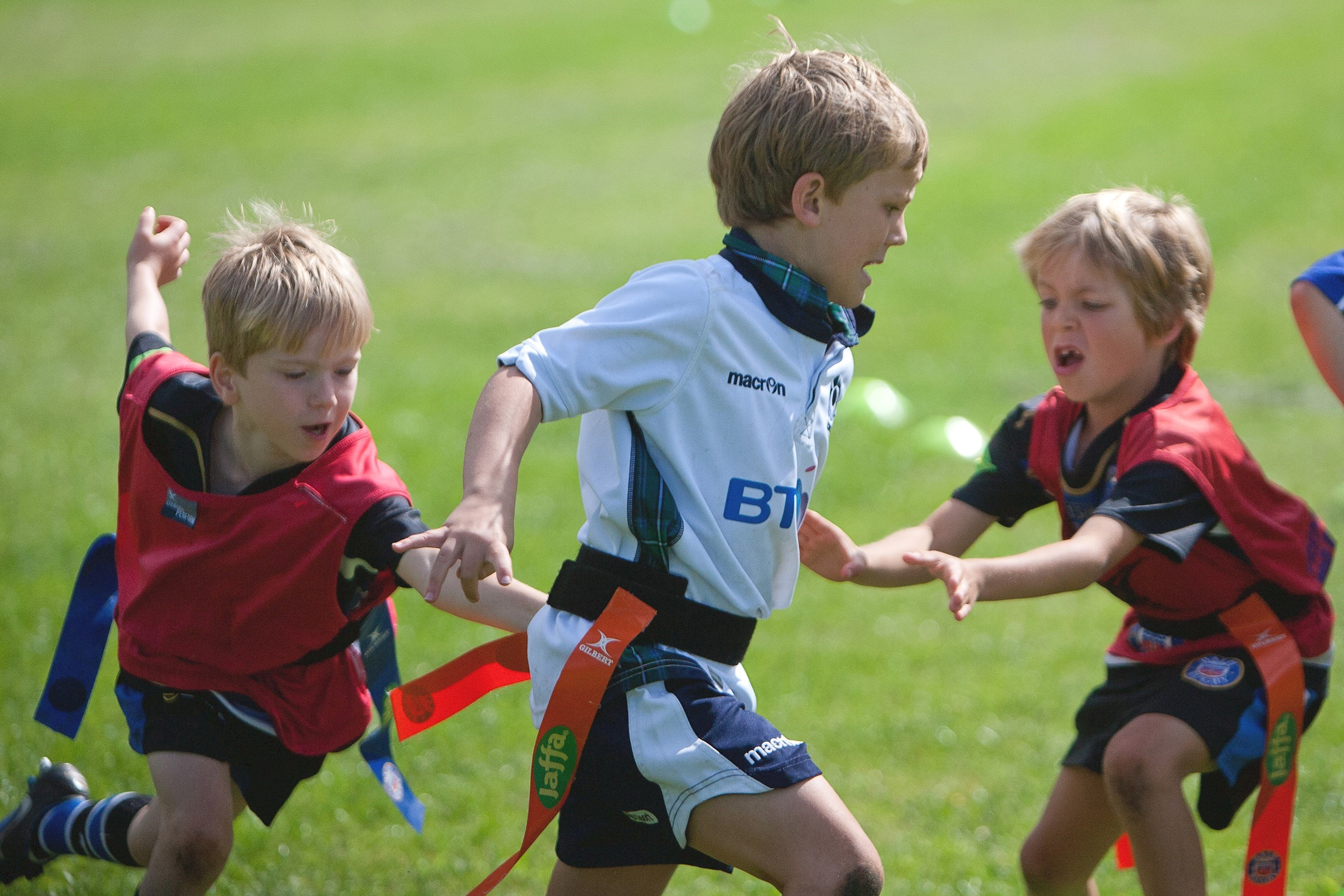 Minis rugby camp returns this October