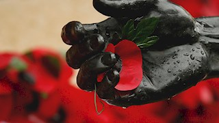 Armistice Day: Remembering the Fallen