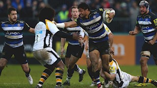 Bath Rugby unable to silence Wasps' buzz