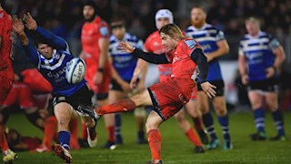 In the Spotlight - Sale Sharks
