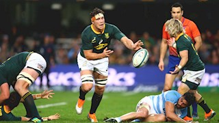 Louw in the South Africa squad to face the All Blacks