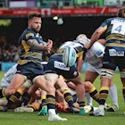 In the spotlight - Worcester Warriors