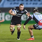 Match Preview | Zebre | Challenge Cup | Round of 16